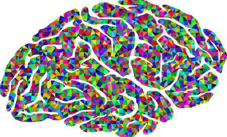 A B2b Marketer's Guide to Cognitive Bias